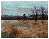 Fields II Art Print