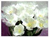 Sunlit Tulips I Art Print