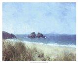 Cornish View Art Print