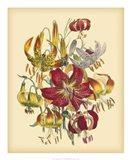 Garden Bouquet III Art Print