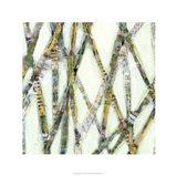 Lemongrass I Art Print