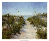 Seagrass and Sand Art Print