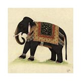 Elephant from India II Art Print