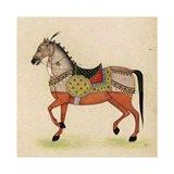 Horse from India I Art Print