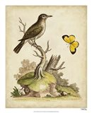 Companions in Nature I Art Print