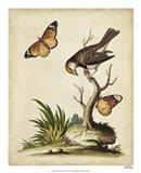 Companions in Nature II Art Print
