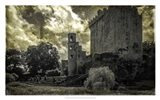 Irish Castle Views III Art Print