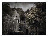 Irish Castle Views VI Art Print