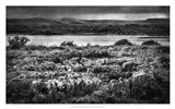 Views of Ireland VII Art Print