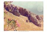 Flowers in Paradise I Art Print