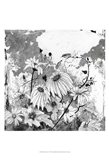 Iza's Garden I Art Print