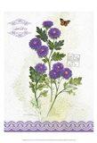 Flower Study on Lace II Art Print