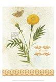 Flower Study on Lace XI Art Print
