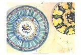 Plate Study I Art Print