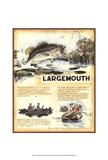 Large Mouth Art Print