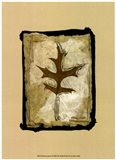 Kyoto Leaves I Art Print
