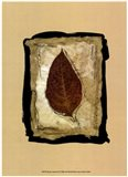 Kyoto Leaves III Art Print
