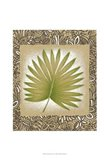 Exotic Palm Leaf II Art Print
