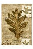 Leaf Collage I Art Print