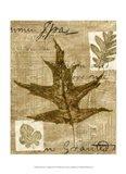 Mini Leaf Collage II (ST) Art Print