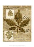 Mini Leaf Collage III (ST) Art Print