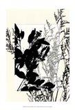 Sm Translucent Wildflowers IX Art Print