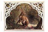 Missy Rabbit Art Print