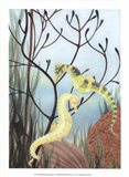Seahorse Serenade II Art Print