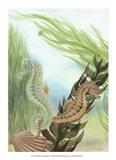 Seahorse Serenade IV Art Print