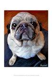 Pug on a Rug Art Print