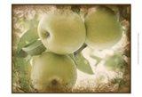 Vintage Apples II Art Print