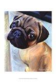Baby Puglet Art Print
