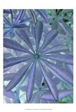 Woodland Plants in Blue I Art Print