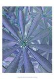 Woodland Plants in Blue II Art Print