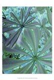 Woodland Plants in Blue III Art Print