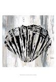 Black Shell II Art Print