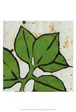 Planta Green III Art Print
