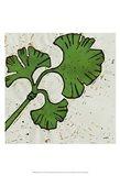 Planta Green VI Art Print