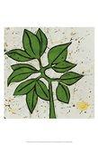 Planta Green IX Art Print