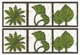 2-Up Verde Botanical II Art Print