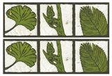 2-Up Verde Botanical IV Art Print