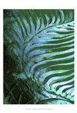 Emerald Feathering I Art Print