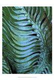 Emerald Feathering II Art Print