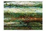 Lines of Nature I Art Print