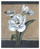 White Tulips II Art Print