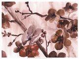 Blossom Poetry II Art Print