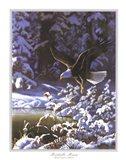 Eagle In Winter Art Print