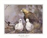 Golden Eagle Nesting Art Print