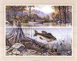 Trout Underwater Art Print