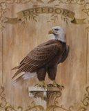 Eagle Freedom Art Print